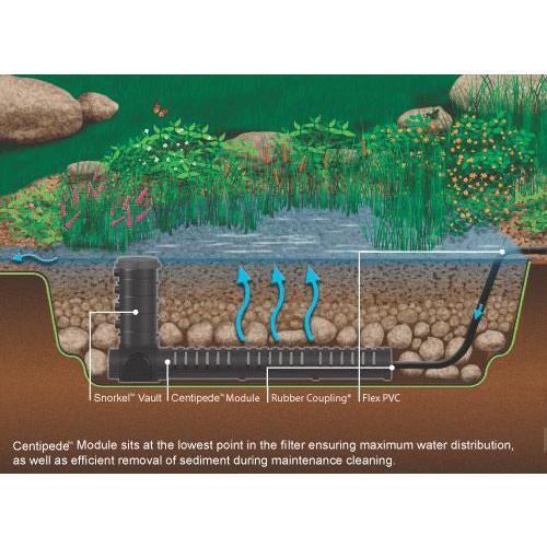 Bog Filtration