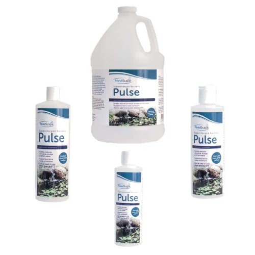 Seasonal Water Treatments