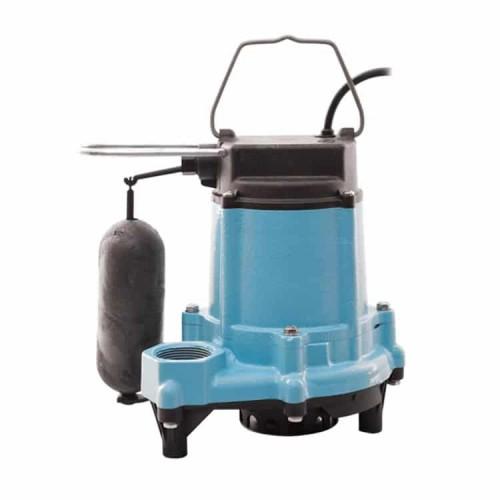 Little Giant Cast Iron Pumps