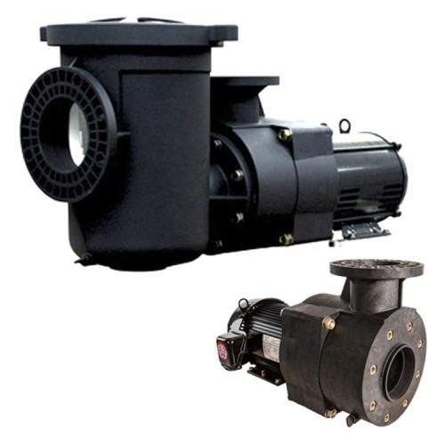 Lifegard Verus Premium-Efficiency Pumps